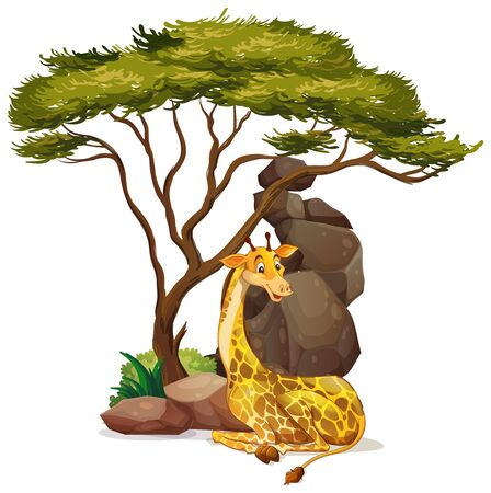 Isolated picture of giraffe under the tree illustration Ilustrace