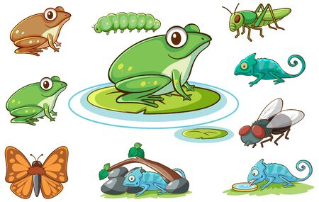 Isolated set of different insects illustration Ilustracja