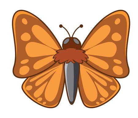 Night moth on white background illustration