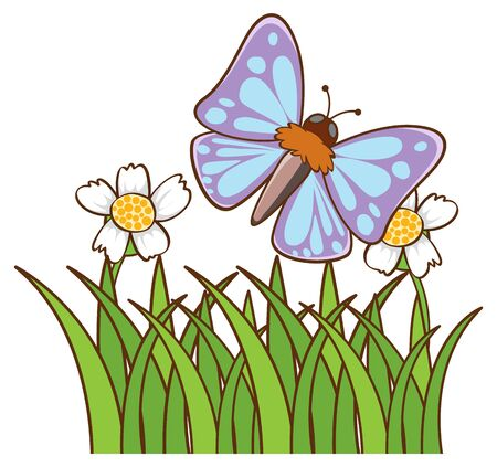 Blue butterfly on white background illustration