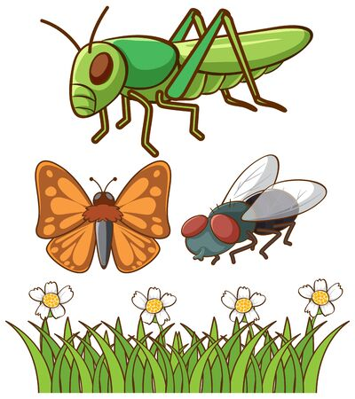 Isolated picture of different bugs illustration