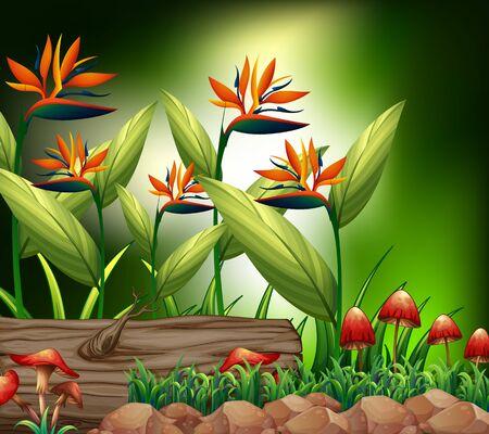 Background scene with nature theme illustration Stock Illustratie