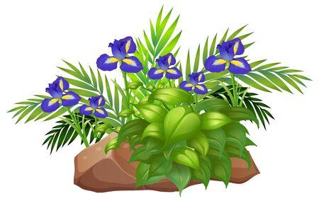 Purple flowers and bush on rocks on white background illustration
