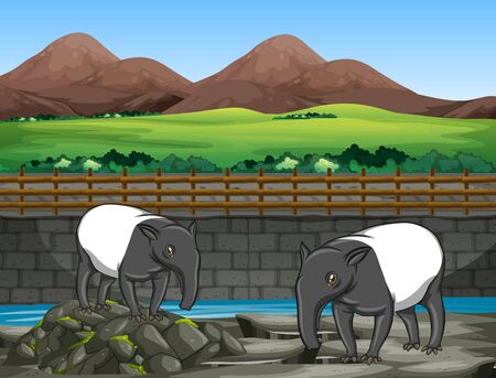 Scene with two tapirs at the zoo illustration
