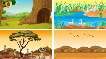Four scenes of nature with animals illustration