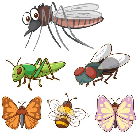 Isolated picture of different insects illustration Ilustracja
