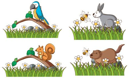 Four types of animals in garden illustration