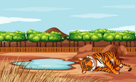 Scene with tiger in the open zoo illustration