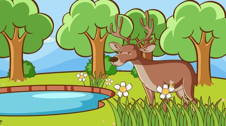 Scene with deer in forest illustration