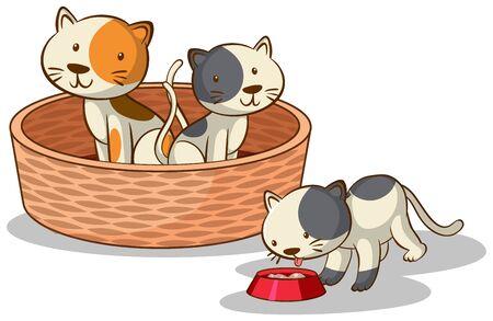 Three cats on white background illustration