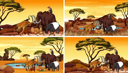 Four scenes with african animals in the field illustration