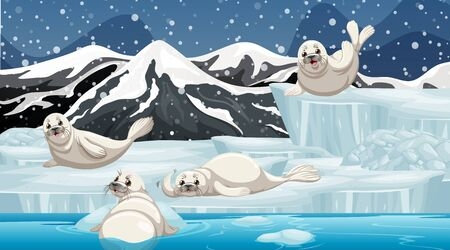 Winter scene with four seals on ice illustration