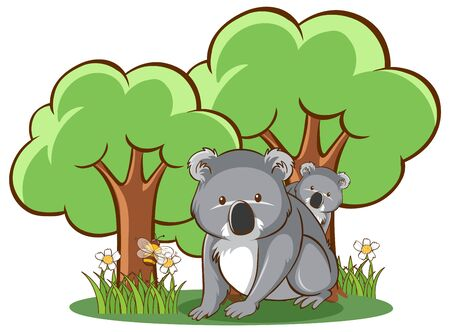 Koala in forest on white background illustration
