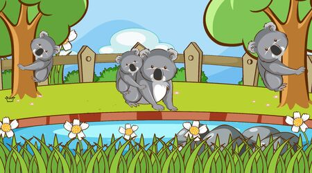 Scene with koala in the park illustration