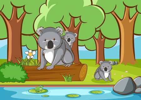 Scene with koala in the forest illustration
