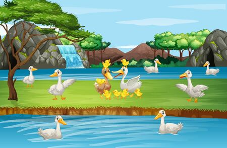 Scene with ducks by the pond illustration