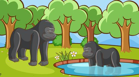 Scene with gorillas in forest illustration