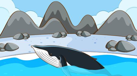Whale swimming in cold water illustration