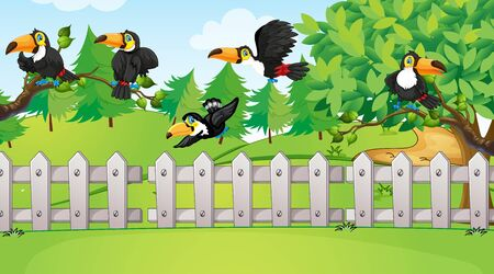Scene with many toucan birds in the park illustration