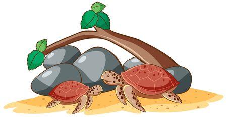Sea turtles on white background illustration 일러스트