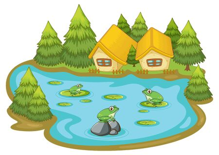 Frogs in the pond on white background illustration