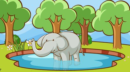 Scene with elephant in the pond illustration