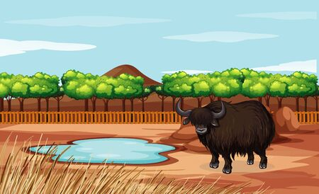 Scene with buffalo in the open zoo illustration