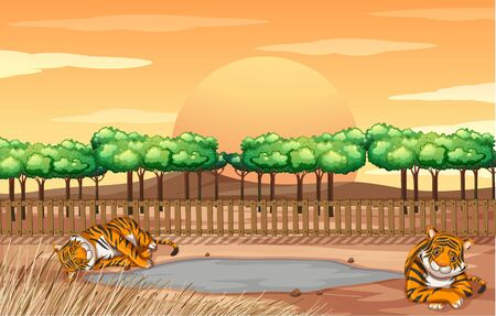 Scene with tigers in the zoo illustration