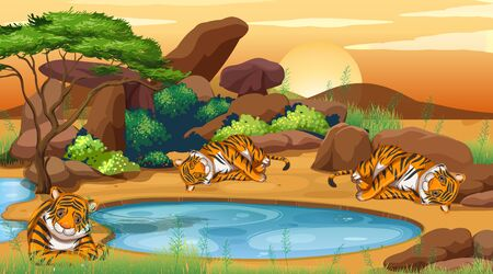 Scene with tigers by the pond illustration