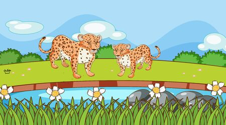 Scene with cheetah in the field illustration
