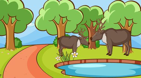 Scene with deers in the forest illustration Stock fotó - 133654314