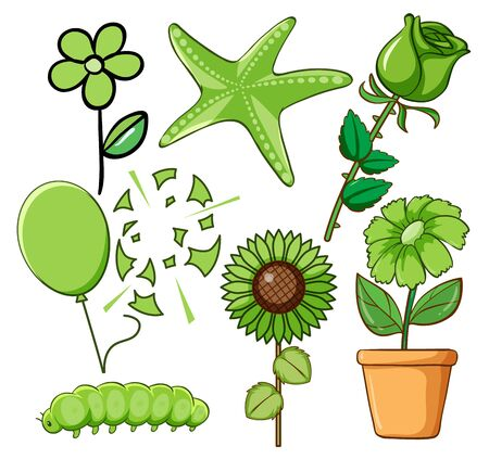 Set of flowers and other things in green illustration
