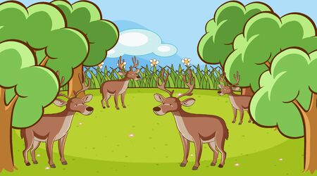 Scene with many deers in the forest illustration