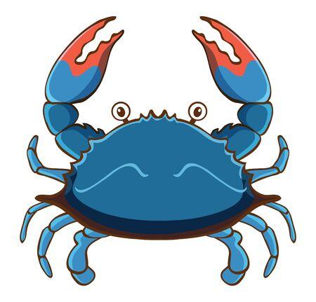Blue crab on white background illustration