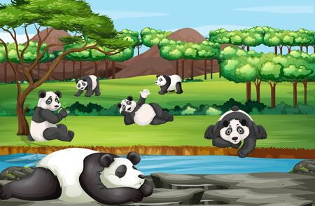 Scene with many pandas at the open zoo illustration