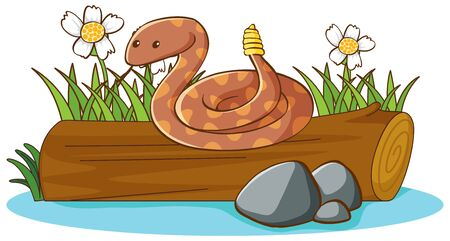 Rattlesnake on white background illustration Ilustracja