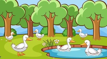 Scene with many ducks in the pond illustration