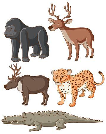 Isolated picture of wild animals illustration Illustration