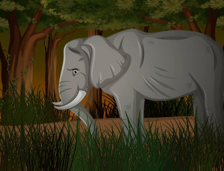 Skinny elephant in dark forest illustration Standard-Bild - 134608285