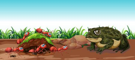 Nature scene with toad and ants illustration