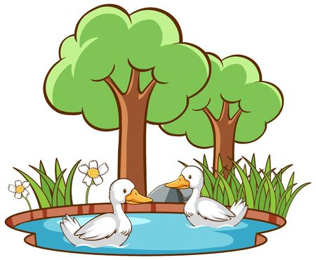 Isolated picture of two ducks in the pond illustration Иллюстрация