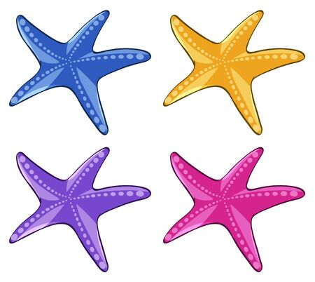 Starfish in four different colors illustration