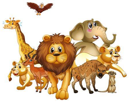 Many animals on white background illustration Ilustração