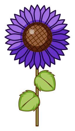 Single flower in purple color illustration