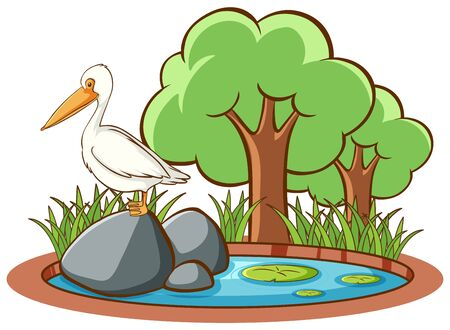 Isolated picture of stork on rock illustration