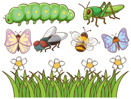 Isolated picture of different insects illustration