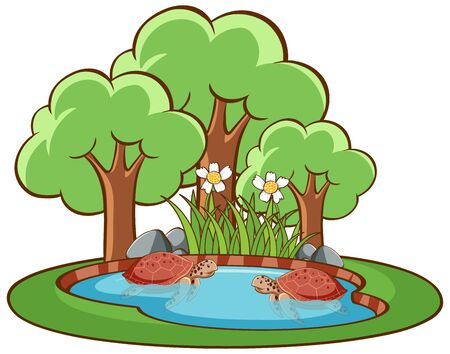 Isolated picture of turtles in the small pond illustration
