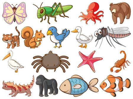 Large set of wildlife with many types of animals and insects illustration