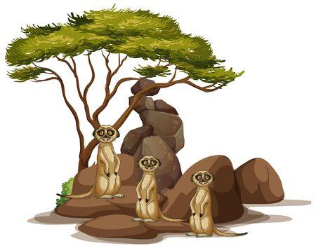 Geïsoleerd beeld van stokstaartjes op de rotsillustratie