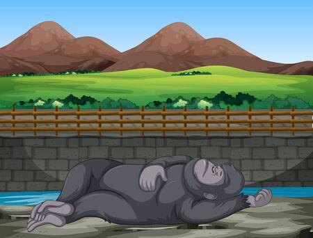Scene with gorilla sleeping at the zoo illustration Ilustração